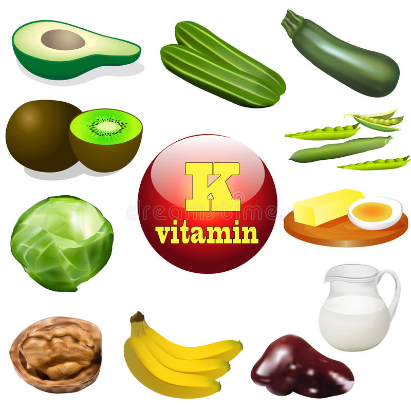 Vitamin K plant and animal products royalty free illustration