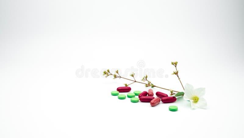 Vitamin och tilläggminnestavla- och kapselpreventivpillerar med blomman och filialen på vit bakgrund med kopieringsutrymme royaltyfri bild