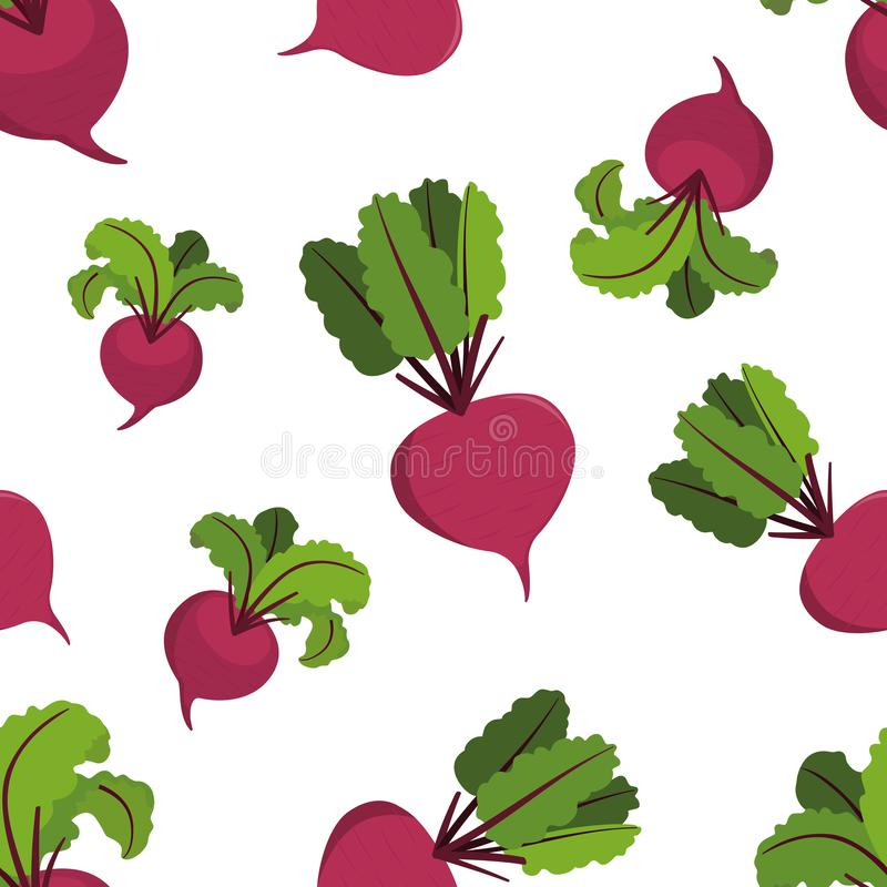 Vitamin purple vegetable beet, beetroot with green leaves. Seamless vector pattern on white background vector illustration