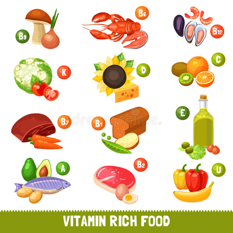 Vitamin Rich Food Products stock illustration