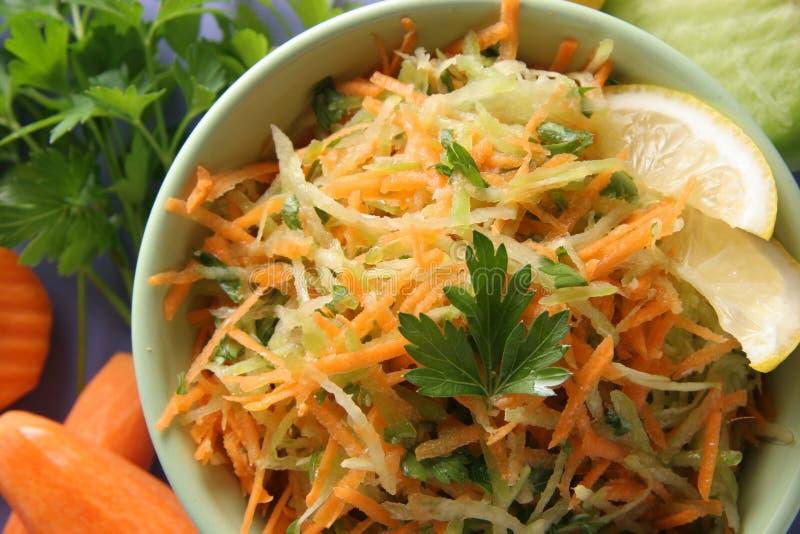 Vitamin salad. royalty free stock photo