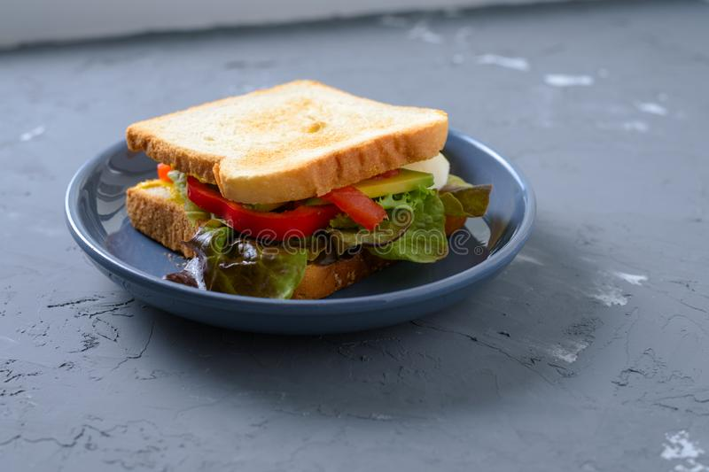 Vitamin sandwich of toast, lettuce, bell pepper, avocado, mozzarella and mustard sauce royalty free stock images
