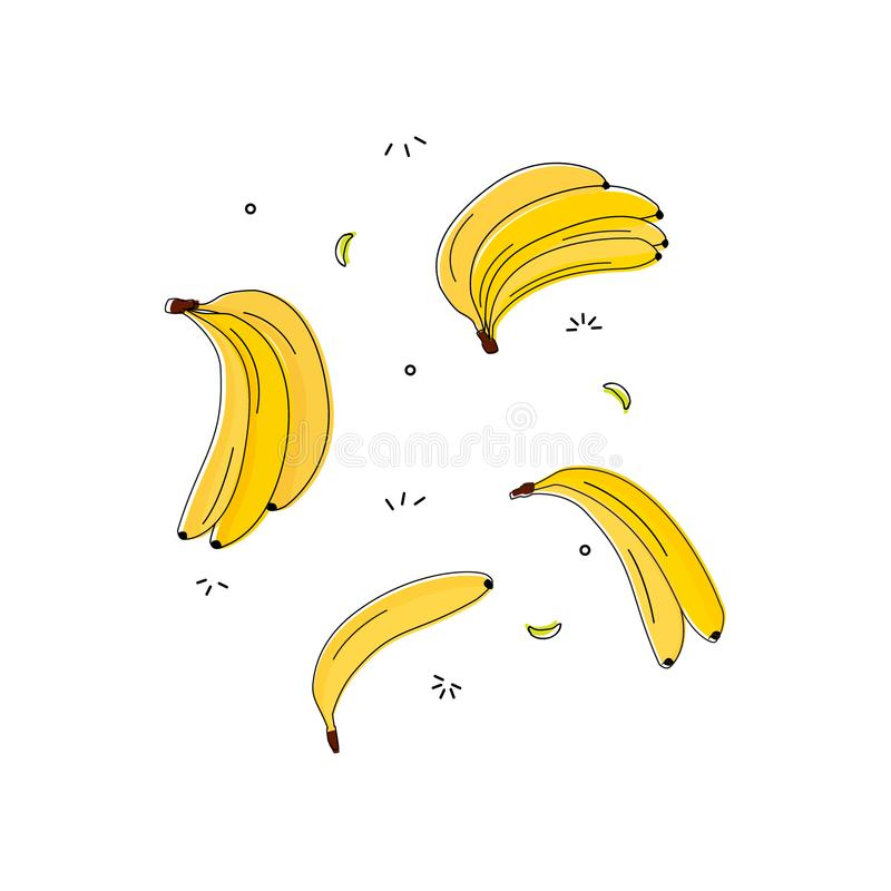 Vitamin tasty bananas pattern. Tropical food vegetarian organic background. Exotic banana drawing. Yummy beach summer stock illustration