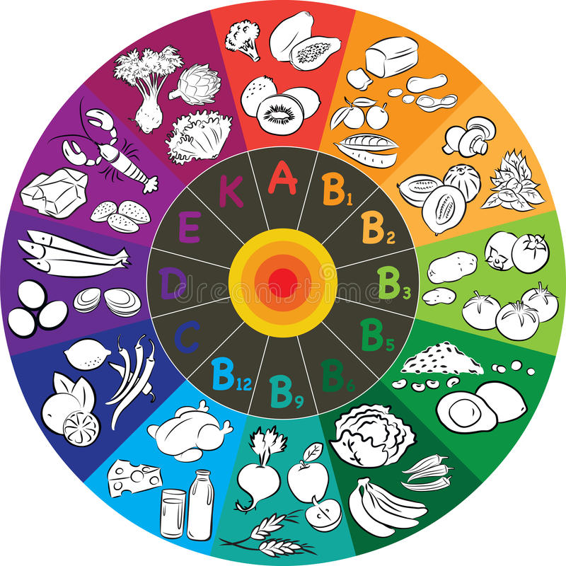 Vitamin Wheel. Vector illustration of vitamin groups in colored wheel