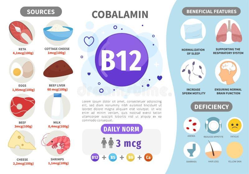 Vitamina B12 de Infographics ilustración del vector