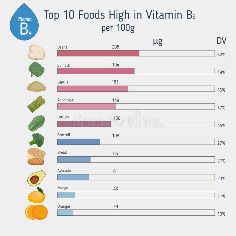 Vitamina B9 o ácido fólico infographic libre illustration