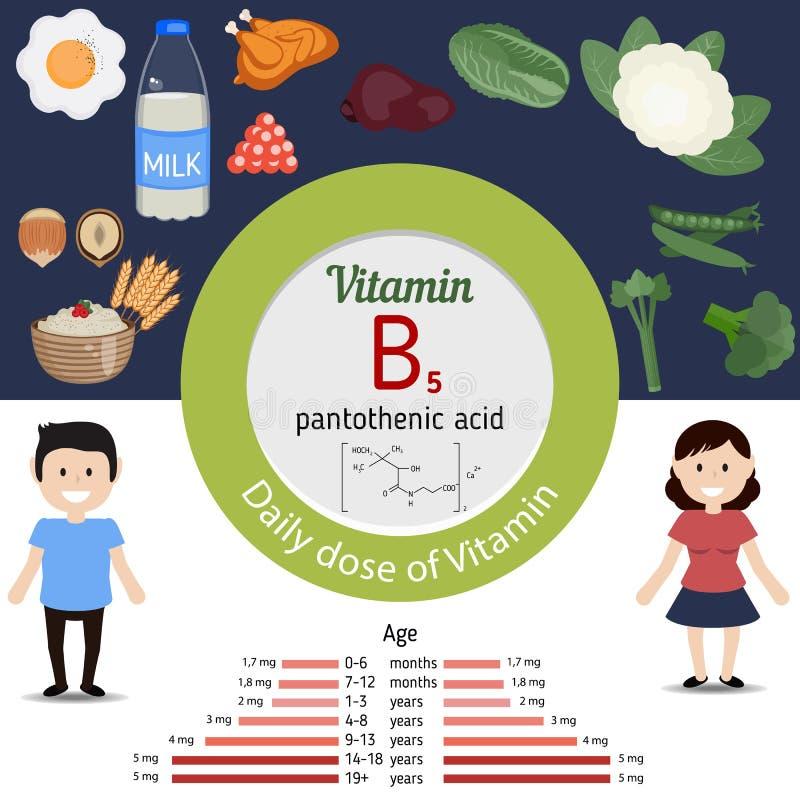 Vitamina B5 o ácido pantoténico infographic stock de ilustración
