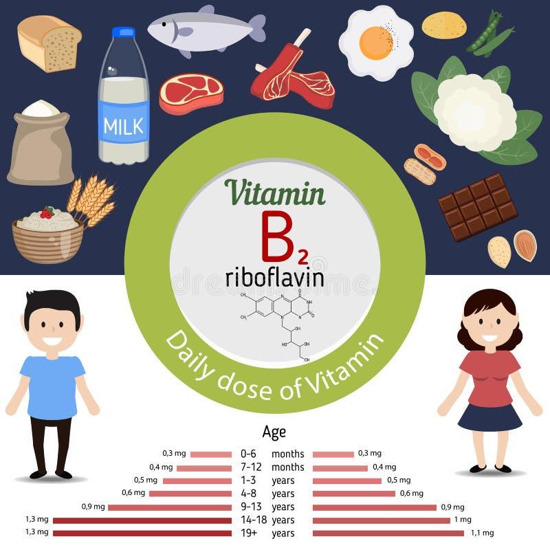 Vitamina B2 o riboflavina infographic ilustración del vector