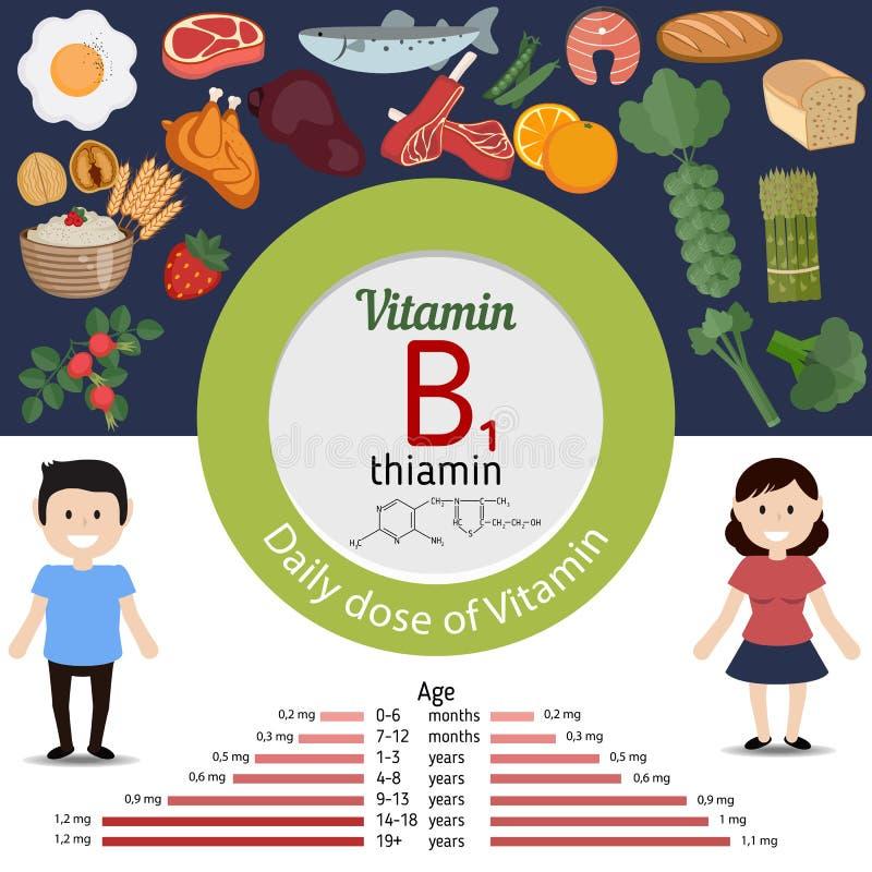 Vitamina B1 o tiamina infographic stock de ilustración