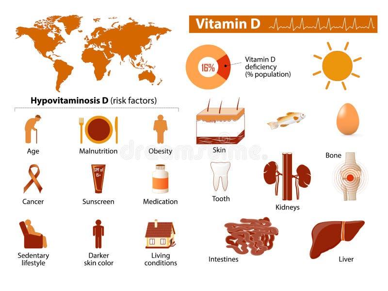 Vitamina D infographic ilustração stock