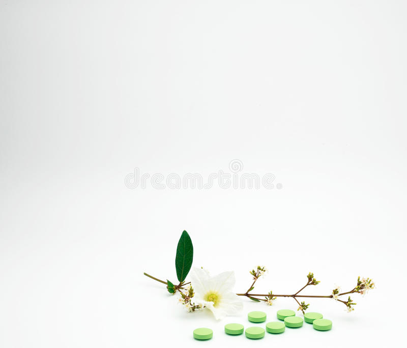 A vitamina e o suplemento marcam comprimidos com flor e ramificam no fundo branco com espaço da cópia fotos de stock