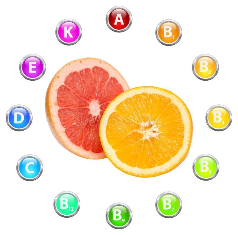 Vitaminas saudáveis dos frutos tropicais da vida ilustração royalty free