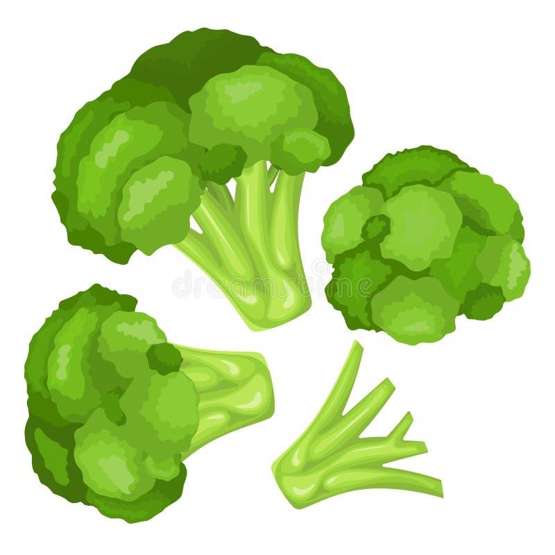 Vitaminas y minerales de la cabeza de flor del bróculi Infographics sobre los alimentos en col del bróculi ilustración del vector