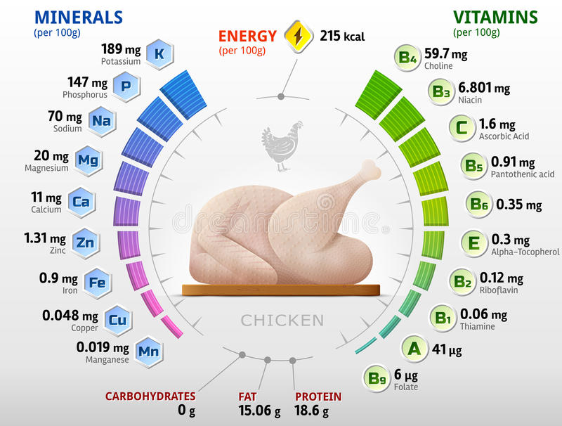 Vitaminas y minerales del pollo crudo ilustración del vector