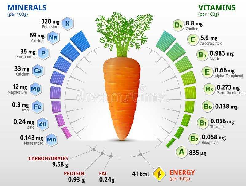Vitaminas y minerales del tubérculo de la zanahoria libre illustration
