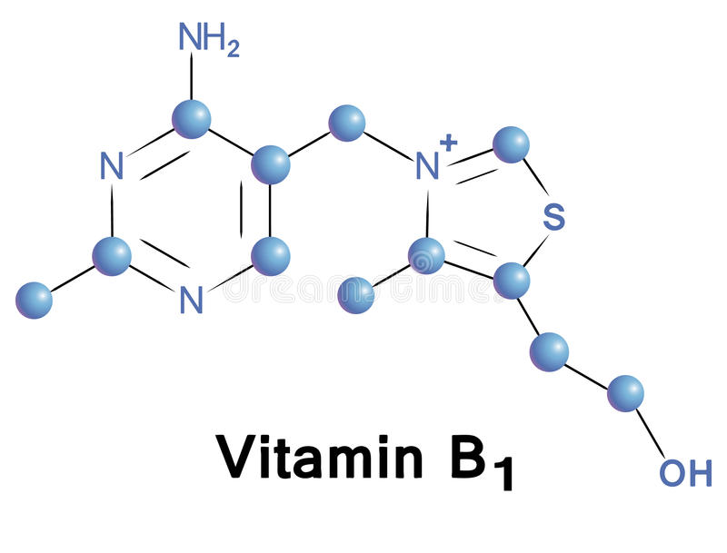 Vitamine B1 illustration de vecteur