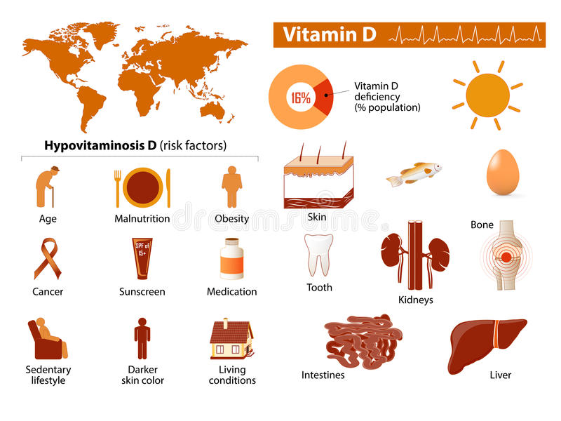 Vitamine D infographic illustration stock