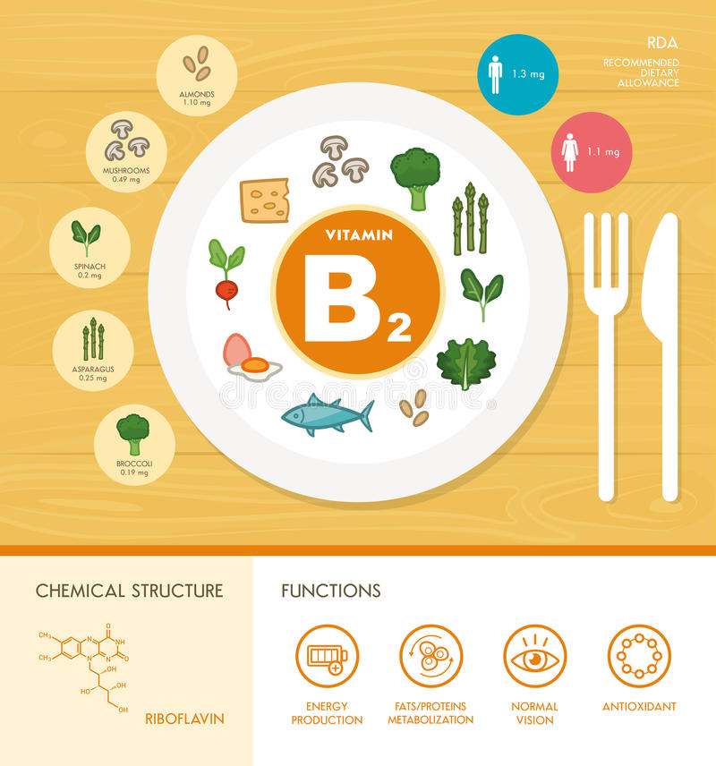 Vitamine und Mineralien stock abbildung