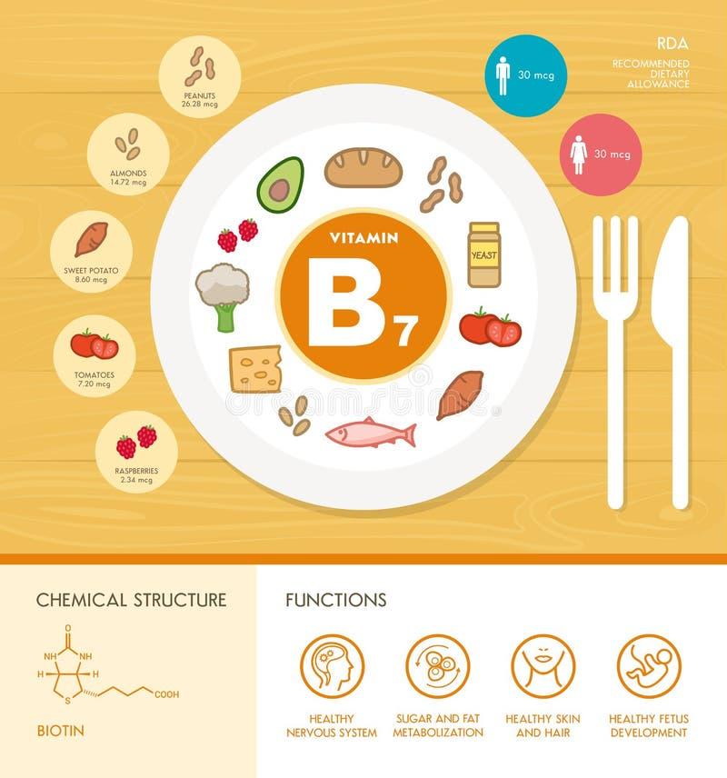 Vitamine und Mineralien lizenzfreie abbildung