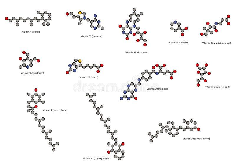 Vitaminer (alla except vitaminet B12), kemisk struct vektor illustrationer
