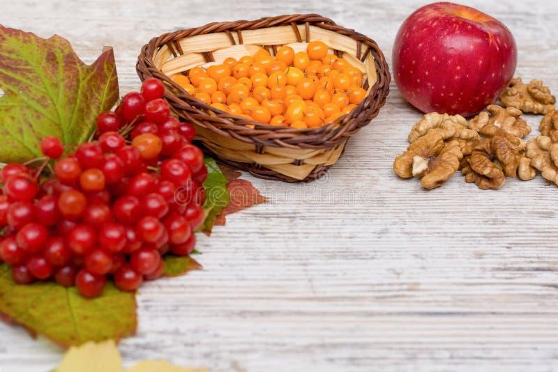 Vitaminer av hösten Viburnum havsbuckthorn, valnötter, äpplekopieringsutrymme royaltyfri fotografi