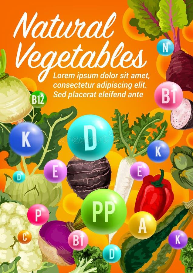 Vitaminer i peppar, rädisa, broccoligrönsaker vektor illustrationer