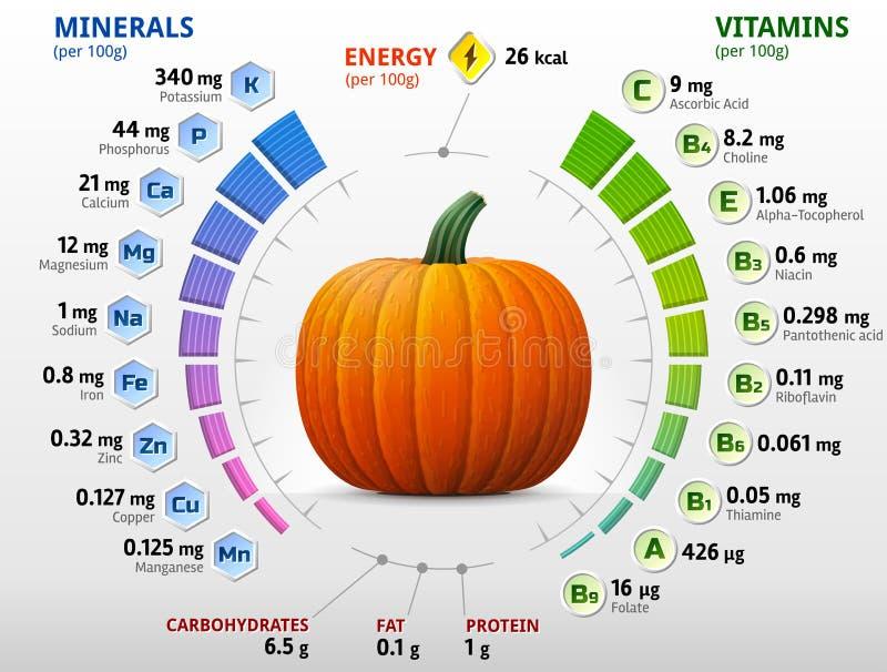 Vitaminer och mineraler av pumpa royaltyfri illustrationer