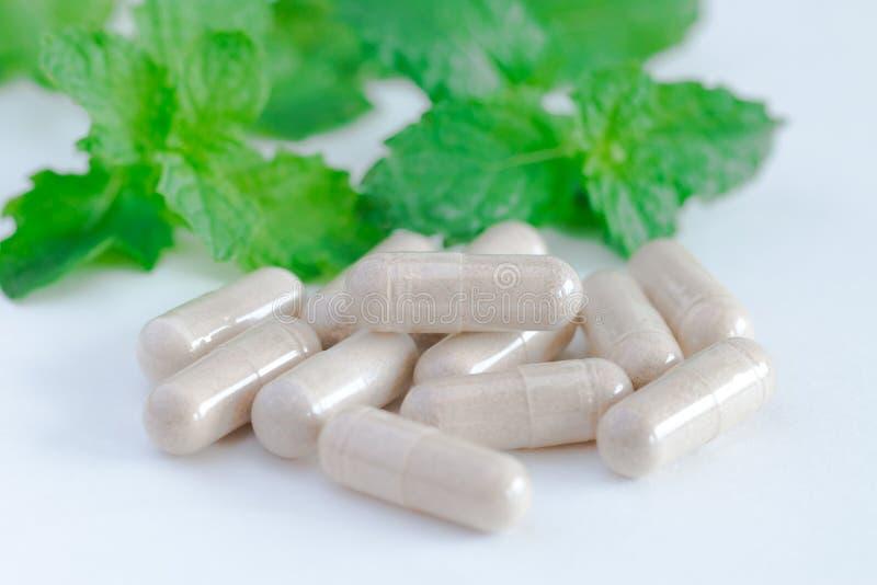 Vitaminergänzungen, Kräuter lizenzfreies stockbild