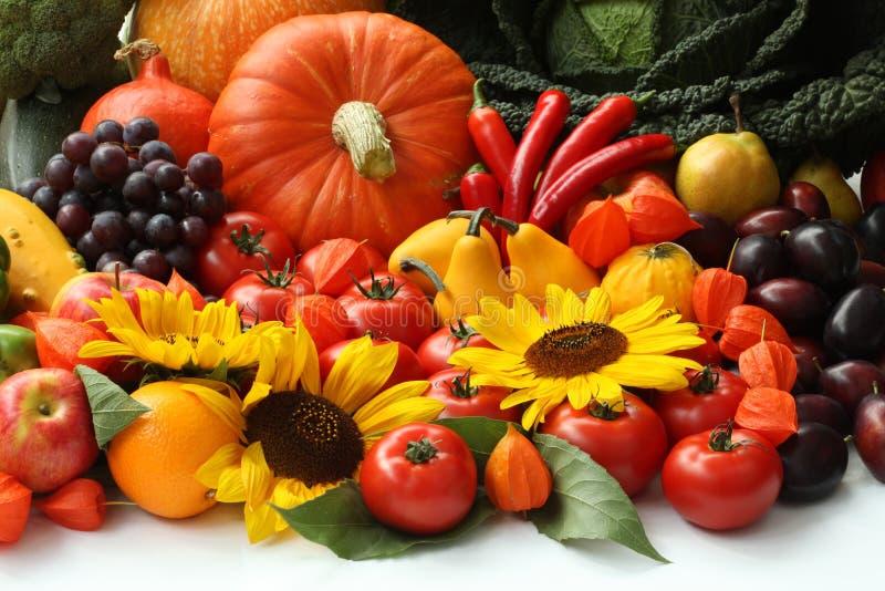 Vitamines d'automne image stock