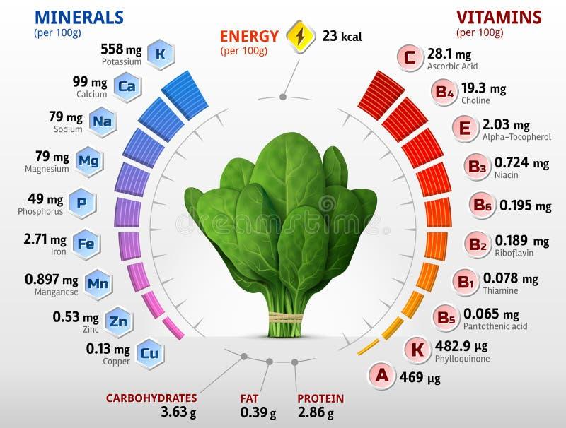 Vitamines et minerais des feuilles d'épinards illustration stock