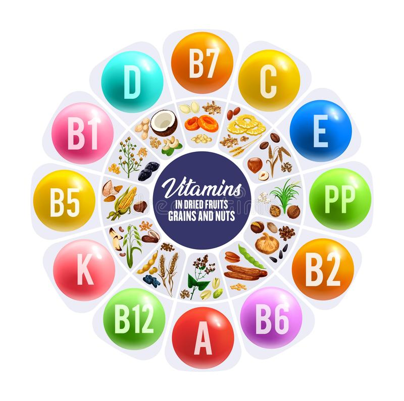 Vitamins in dried fruits, nuts and cereal grains. Dried fruit, nus and grais vitamins round chart. Nutrition facts vector graph with peanut, date and almond royalty free illustration