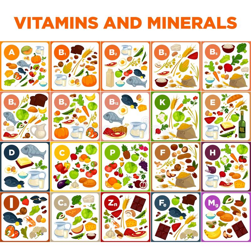 Vitamins and minerals big spreadsheet with colorful illustrations vector illustration