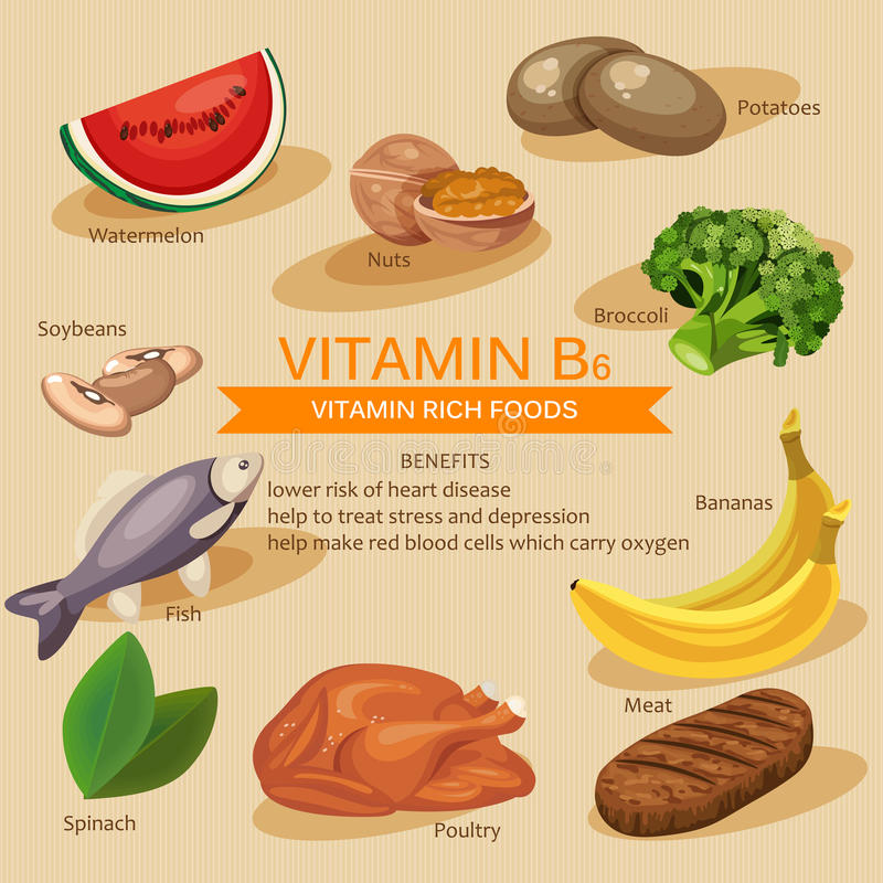 Foods Containing Vitamin B And Vitamin D