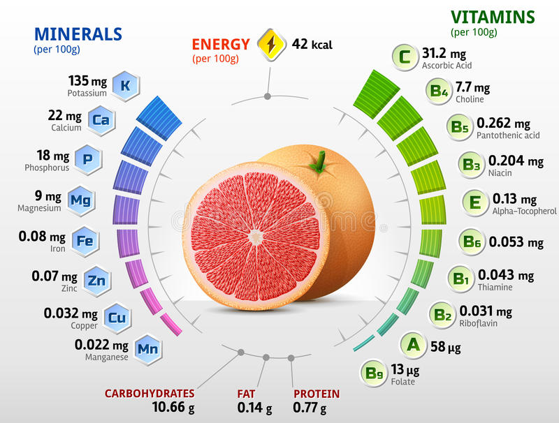 Vitamins and minerals of grapefruit fruit stock vector download vitamins and minerals of grapefruit fruit stock vector illustration of healthful elements malvernweather Images