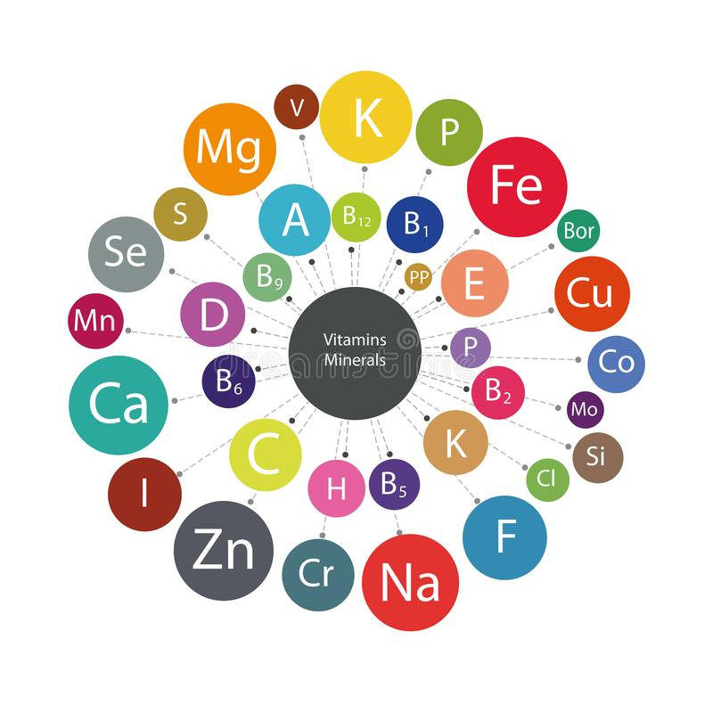 Vitamins and minerals. Scheme `All vitamins and minerals for human health. ` Micro and macro elements and vitamins in a circular scheme. The basis of a healthy stock illustration