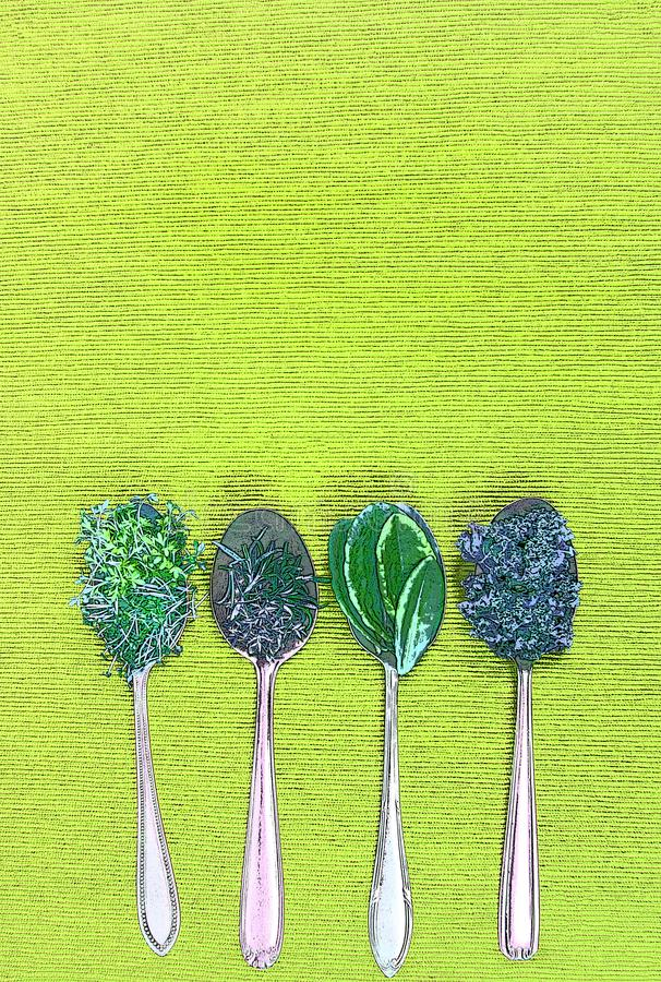 Vitamins - various herbs on spoons. Lie on light green cloth, with copy space and photo filter royalty free illustration