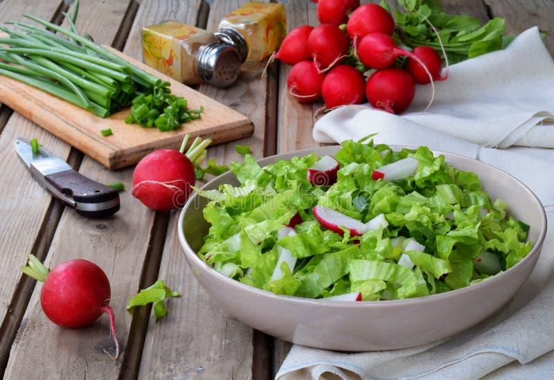 Vitaminsallad från grönsallat, rädisan, salladslökar, kryddade med grönsakolja och senap i platta på träbakgrund Sunt f royaltyfri foto