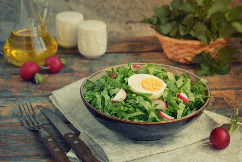 Vitaminsallad från grönsallat, rädisan, salladslökar och ägg, kryddade med grönsakolja i platta på träbakgrund sund mat royaltyfri bild
