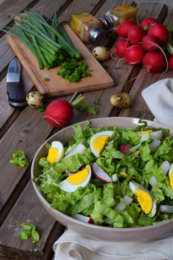 Vitaminsallad från grönsallat, rädisan, salladslökar och ägg, kryddade med grönsakolja och senap i platta på träbakgrund royaltyfri fotografi