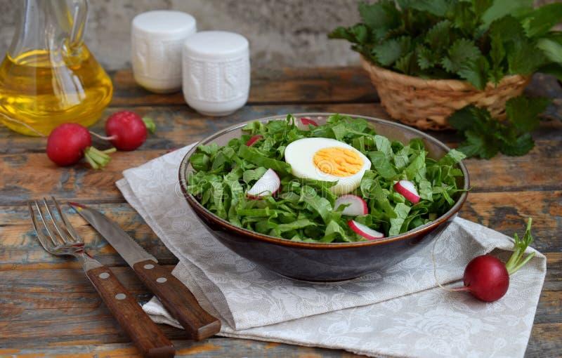 Vitaminsallad fr?n gr?nsallat, r?disan, salladsl?kar och ?gg, kryddade med gr?nsakolja i platta p? tr?bakgrund sund mat royaltyfria foton