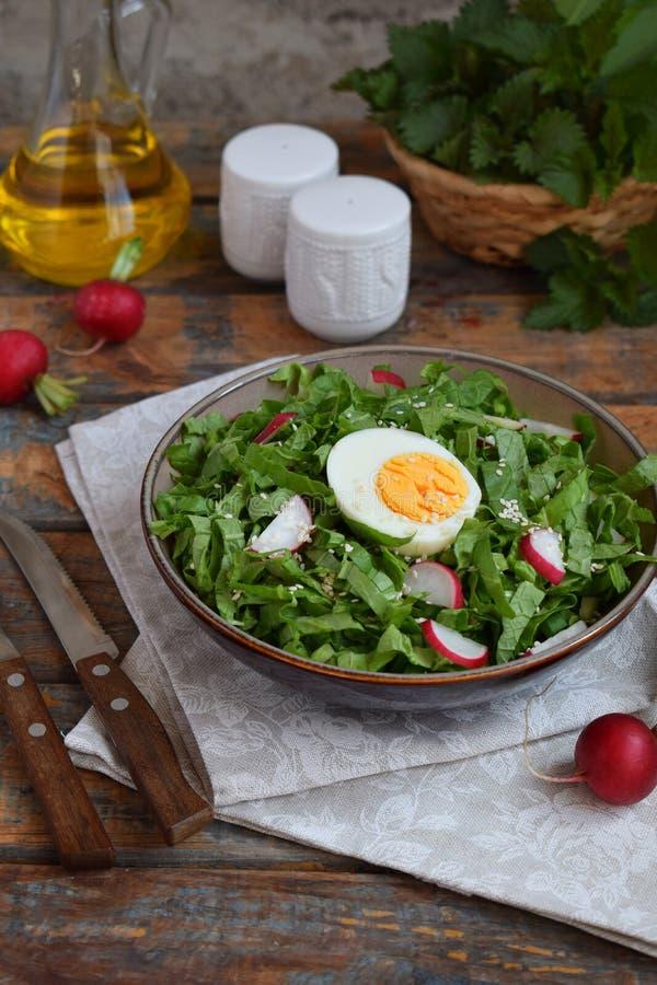 Vitaminsallad fr?n gr?nsallat, r?disan, salladsl?kar och ?gg, kryddade med gr?nsakolja i platta p? tr?bakgrund sund mat royaltyfri fotografi