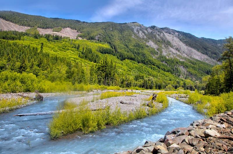 Vitare flodlandskap nära Mount Rainier royaltyfri fotografi