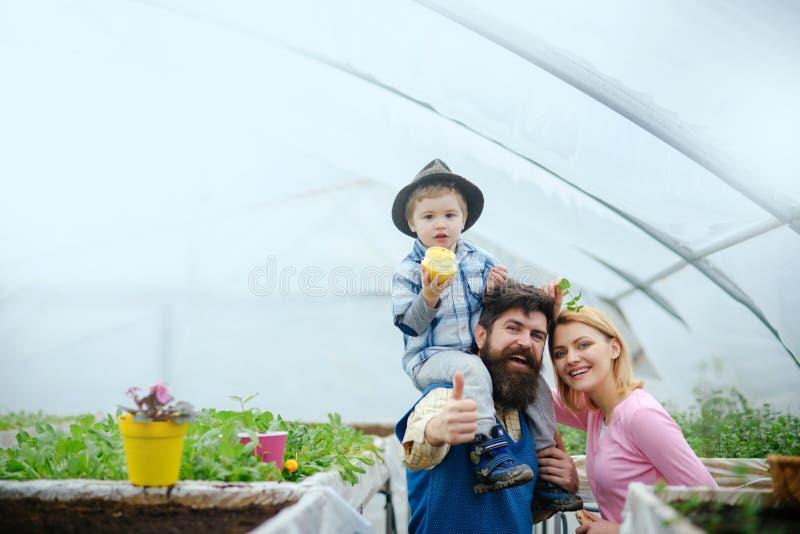 vite dziecko je jabłka z witaminą witamina i zdrowia pojęcie witamina i dieting dla szczęśliwej rodziny nowego wzrostu zdjęcia stock