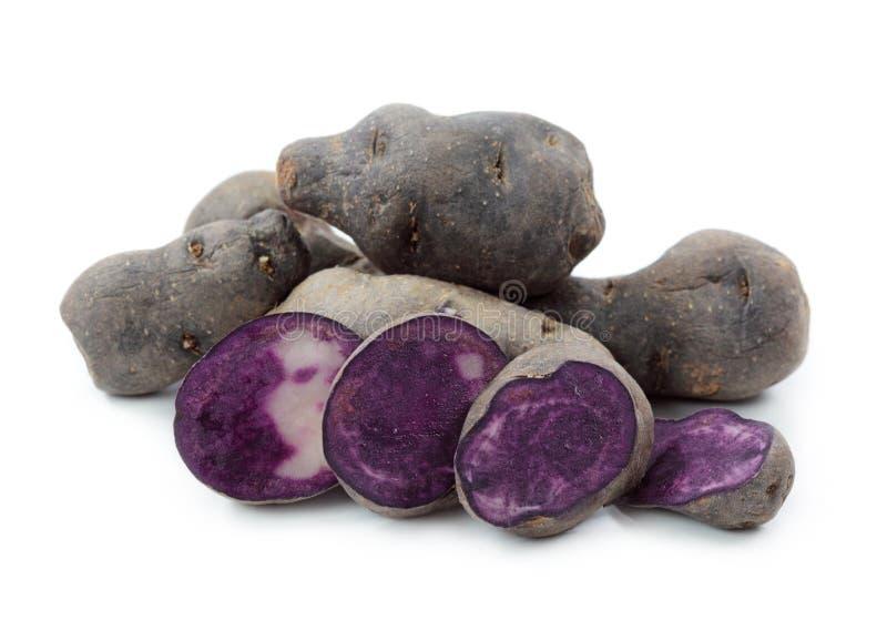 Download Vitelotte Blue-violet Potato Stock Photo - Image: 21210904