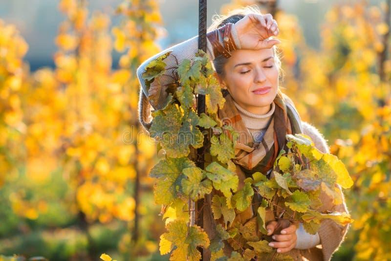 Viticulteur décontracté de femme se tenant dans le vignoble dehors en automne photographie stock