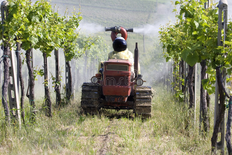 viticulture chimique photos stock