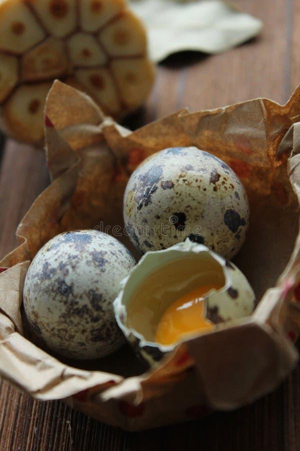 Vitlök för makro för ägg för äggeaster vaktel royaltyfri bild