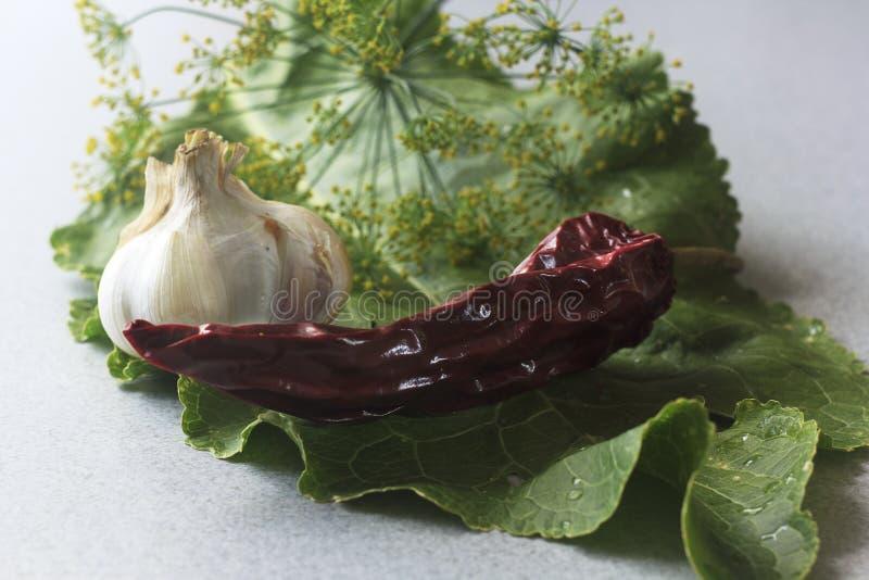Vitlök isolerat, rött som är vit, mat som är ny, peppar, persilja, kryddor, gräsplan, grönsak som är bästa, bakgrund, sikt som är arkivfoto