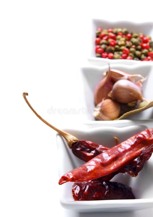 Vitlök och peppar. royaltyfria foton