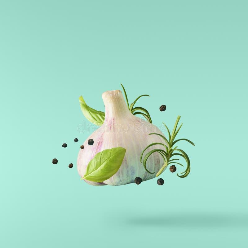 Vitlök som faller i luft med peppar, och örter gillar rosmarin på tur vektor illustrationer
